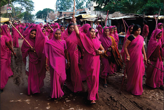 Pink Sari Revolution Book Cover