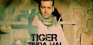 50 Thoughts A Feminist Had While Watching Tiger Zinda Hai