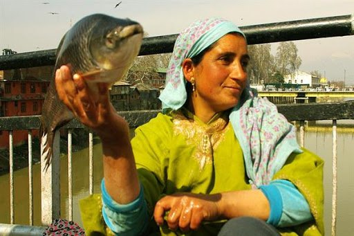 Environment, Conflict And Sustainability: The Fisherwomen Of Kashmir