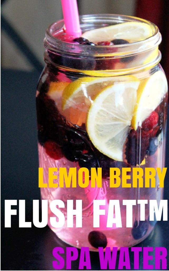 Lemon Berry Flush Fat Spa Major Reasons to Drink Water + spa water recipes #spawater #detox #waterdetox #watercleanse #cucumberwater #infusedwaterrecipe #drinkwater #water #hydration #hydrationnation