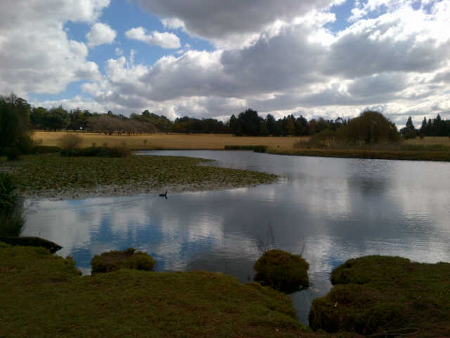 Beautiful scenery at Emmarentia Botanical Gardens