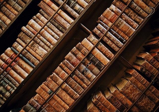 bibliothèque de livres sur le bois, fendeuse bois facile