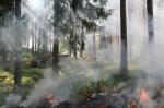 Comment réduire la pollution au feu de bois ?
