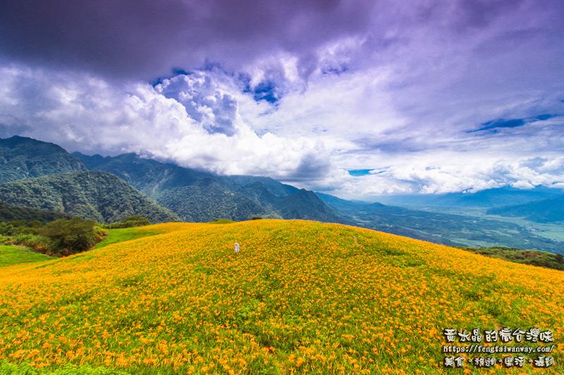 六十石山金針花季【花蓮旅遊】|滿山滿谷的金黃色地毯;交通、場地配置、各大攝影點資訊大公開。 @黃水晶的瘋台灣味