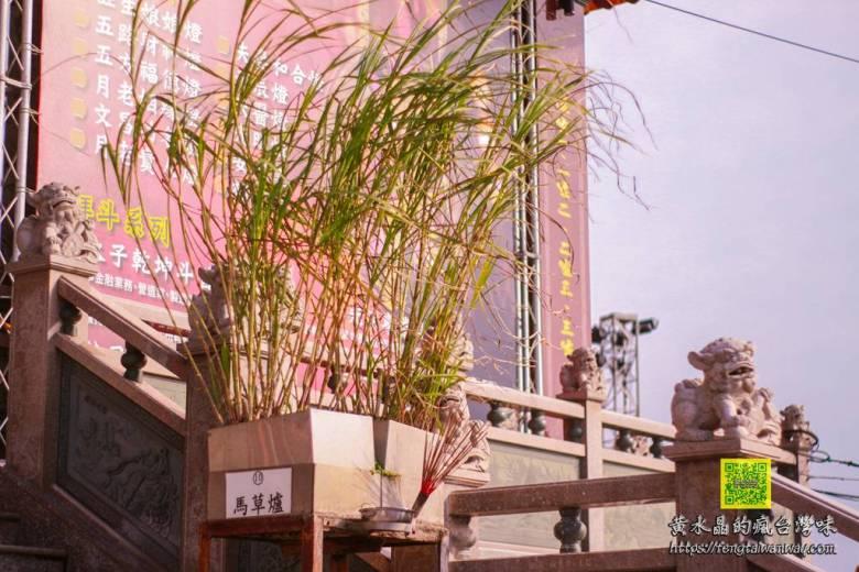 2019護國宮太子遊樂園【桃園景點】|新年走春大年初一免費玩到初五順遊新景點中路復育公園花海 @黃水晶的瘋台灣味