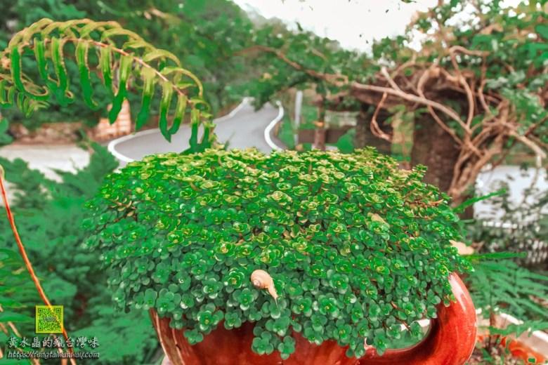 青山農場露天咖啡【太麻里咖啡】|太麻里金針山半山腰上的露天咖啡廳 @黃水晶的瘋台灣味