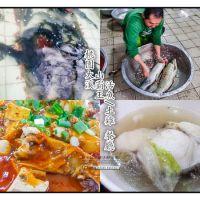 山霸王活魚土雞餐廳【大溪美食】|石門水庫老字號活魚山產餐廳