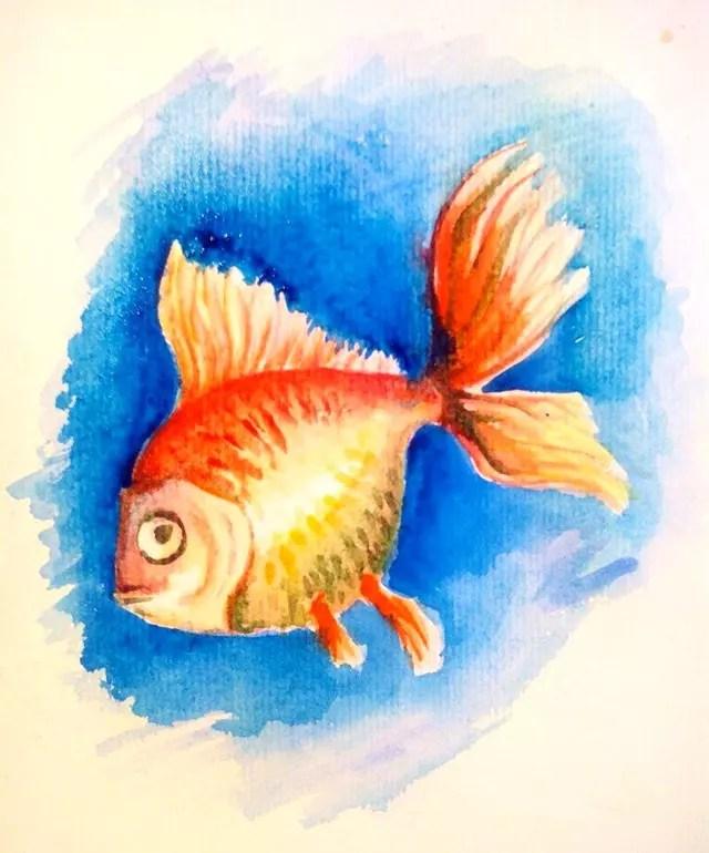 Как нарисовать золотую рыбку? Шаг 10. Портреты карандашом - Fenlin.ru