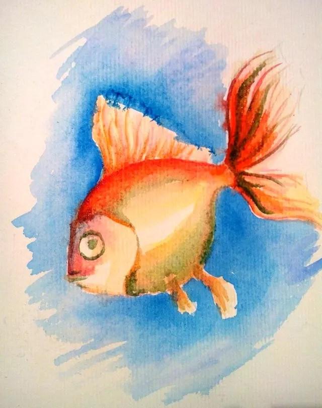 Как нарисовать золотую рыбку? Шаг 8. Портреты карандашом - Fenlin.ru