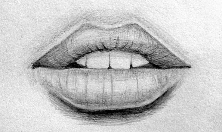 Как нарисовать губы карандашом? Портреты карандашом - Fenlin.ru