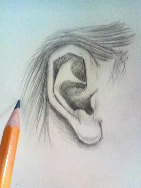 Как нарисовать ухо человека карандашом? Шаг 6. Портреты карандашом - Fenlin.ru