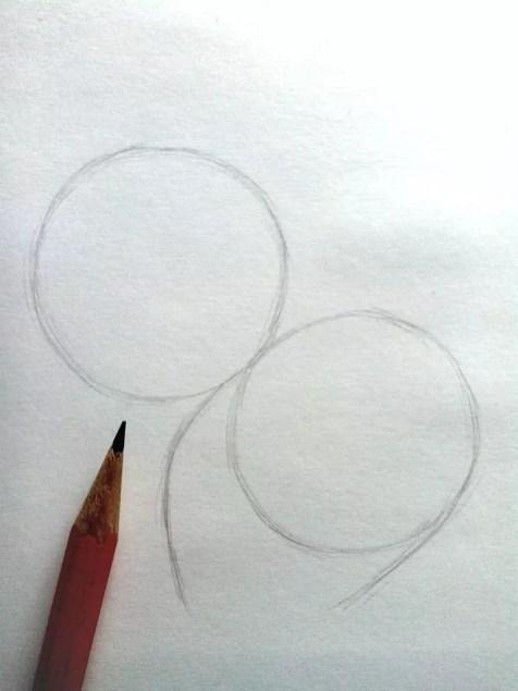 Как нарисовать белку карандашом? Шаг 2. Портреты карандашом - Fenlin.ru