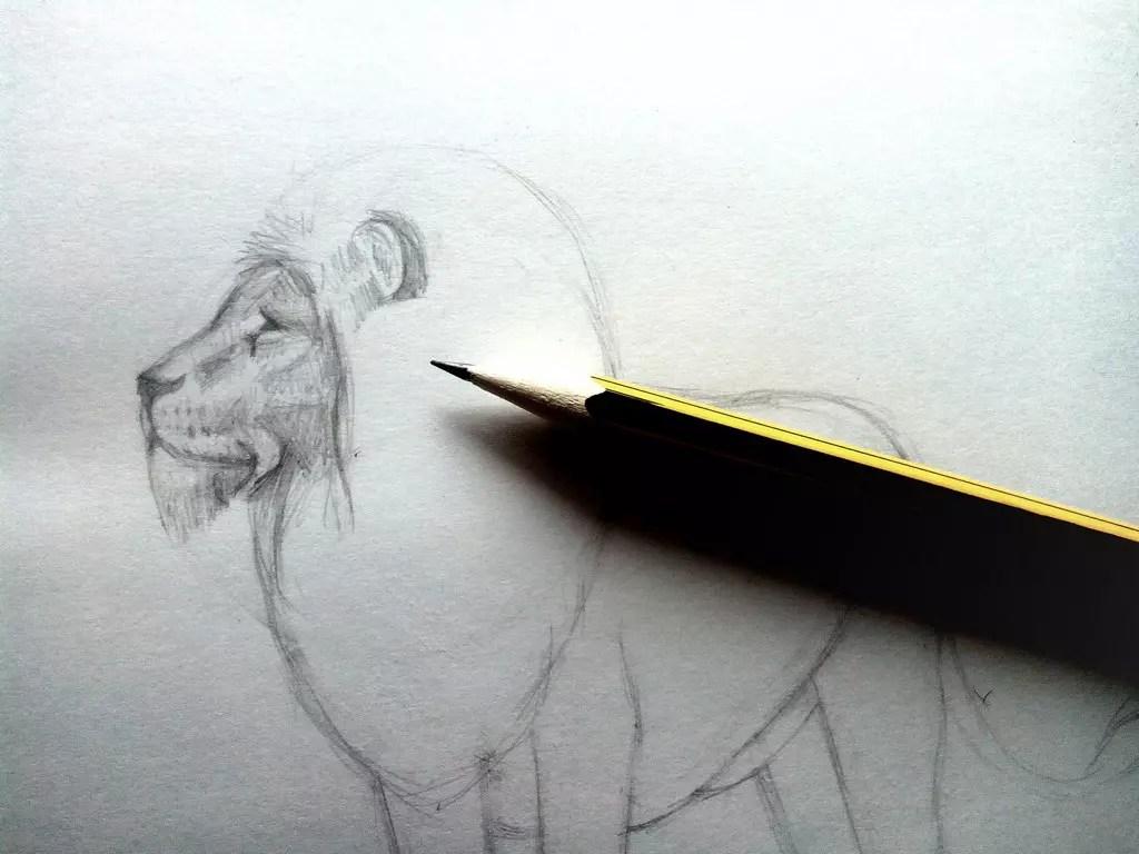 Как нарисовать льва карандашом? Шаг 7. Портреты карандашом - Fenlin.ru