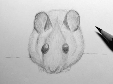 Как нарисовать мышку карандашом? Шаг 16. Портреты карандашом - Fenlin.ru