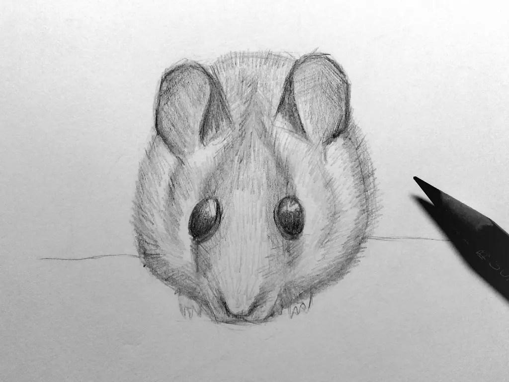 Как нарисовать мышку карандашом? Шаг 17. Портреты карандашом - Fenlin.ru