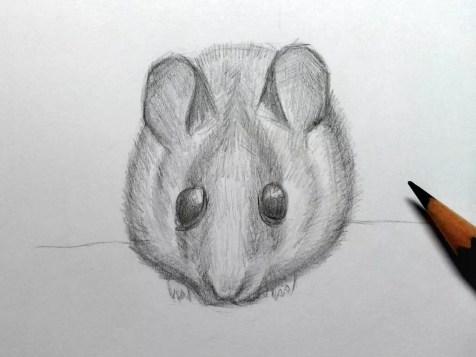 Как нарисовать мышку карандашом? Шаг 18. Портреты карандашом - Fenlin.ru
