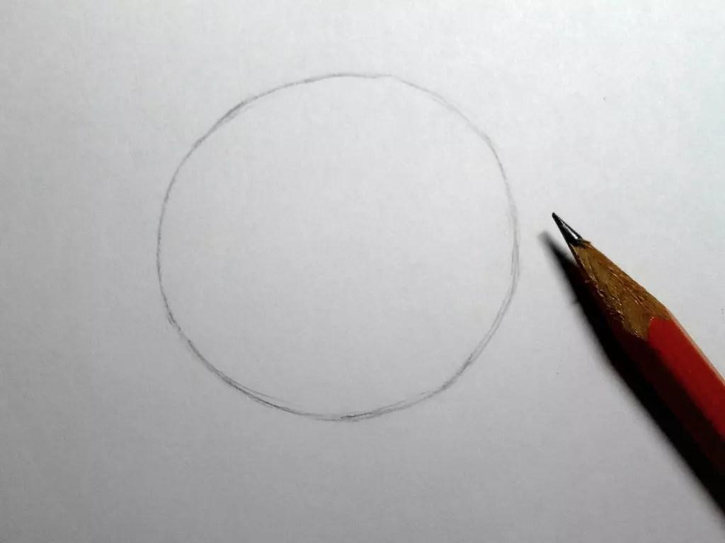 Как нарисовать розу карандашом? Шаг 1. Портреты карандашом - Fenlin.ru