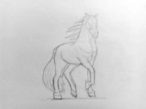 Как нарисовать лошадь карандашом? Поэтапный урок. Шаг 12. Портреты карандашом - Fenlin.ru
