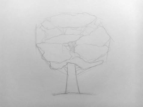 Как нарисовать дерево карандашом? Поэтапный урок. Шаг 5. Портреты карандашом - Fenlin.ru