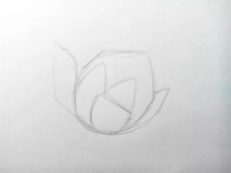 Как нарисовать цветок карандашом? Поэтапный урок. Шаг 3. Портреты карандашом - Fenlin.ru