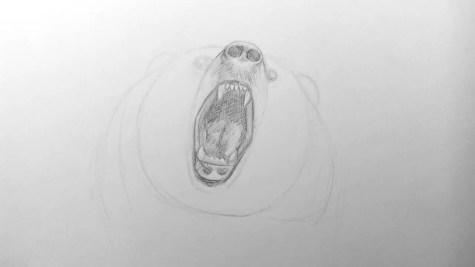 Как нарисовать медведя карандашом? Шаг 11. Портреты карандашом - Fenlin.ru