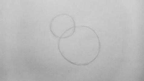 Как нарисовать сову карандашом? Шаг 1. Портреты карандашом - Fenlin.ru