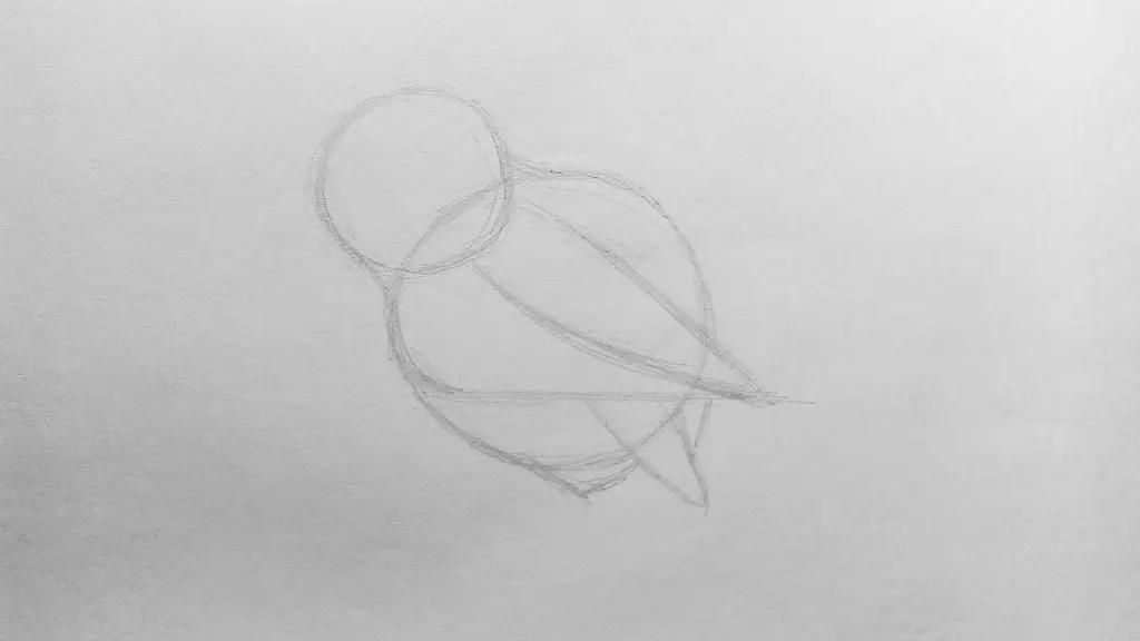 Как нарисовать сову карандашом? Шаг 3. Портреты карандашом - Fenlin.ru