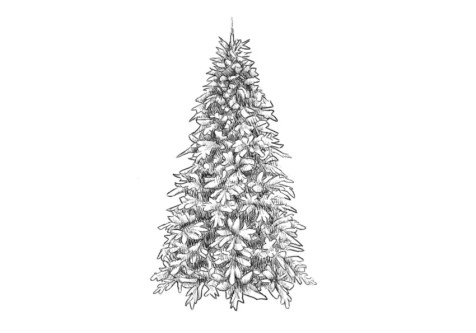 Как нарисовать елку? Шаг 10. Портреты карандашом - Fenlin.ru