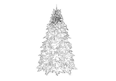 Как нарисовать елку? Шаг 7. Портреты карандашом - Fenlin.ru