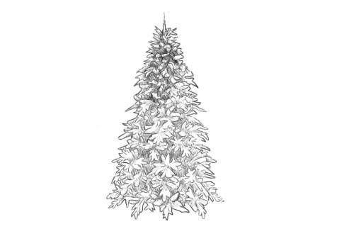 Как нарисовать елку? Шаг 8. Портреты карандашом - Fenlin.ru