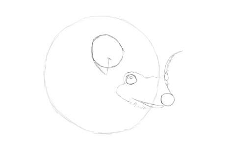 Как нарисовать ежика карандашом? Шаг 4. Портреты карандашом - Fenlin.ru