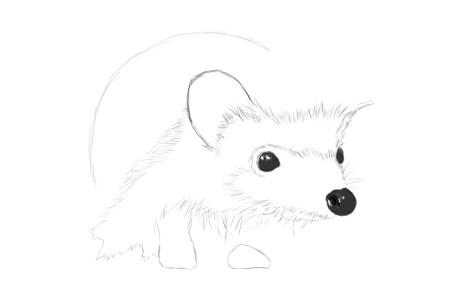 Как нарисовать ежика карандашом? Шаг 7. Портреты карандашом - Fenlin.ru