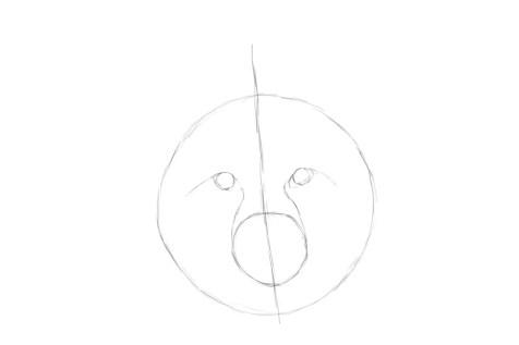Как нарисовать лису на графическом планшете? Шаг 3. Портреты карандашом - Fenlin.ru