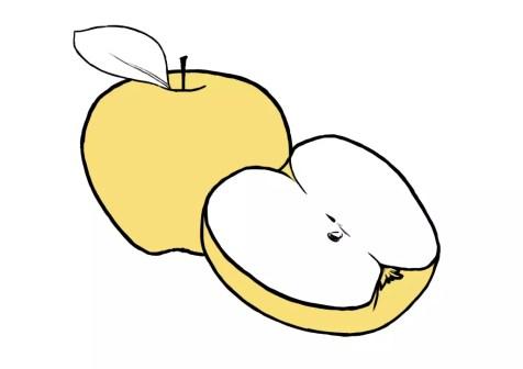 Как нарисовать яблоко? Шаг 7. Портреты карандашом - Fenlin.ru