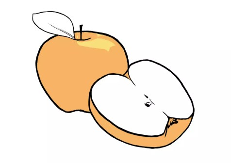 Как нарисовать яблоко? Шаг 8. Портреты карандашом - Fenlin.ru