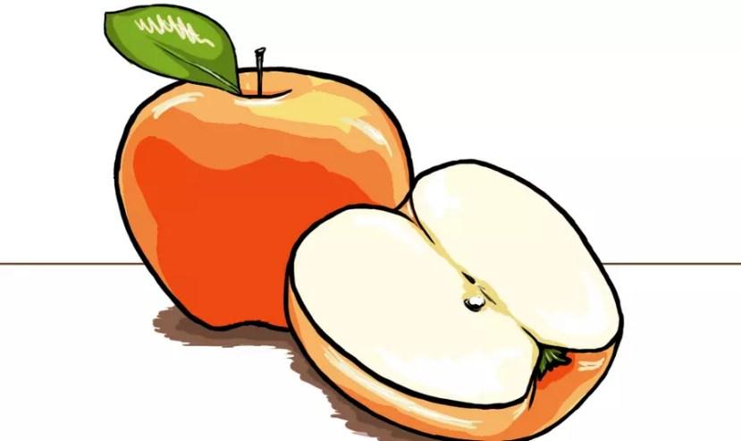 Как нарисовать яблоко? Готовая работа. Портреты карандашом - Fenlin.ru