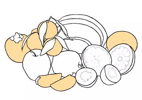 Как нарисовать фрукты? Шаг 8. Портреты карандашом - Fenlin.ru