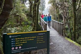 a DOC track with a bridge extending into bush, a fog is over it and fluoro-jacketed tourists walk over the bridge