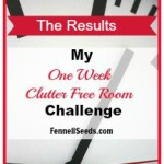 1 Week Clutter Free Room Challenge – Results
