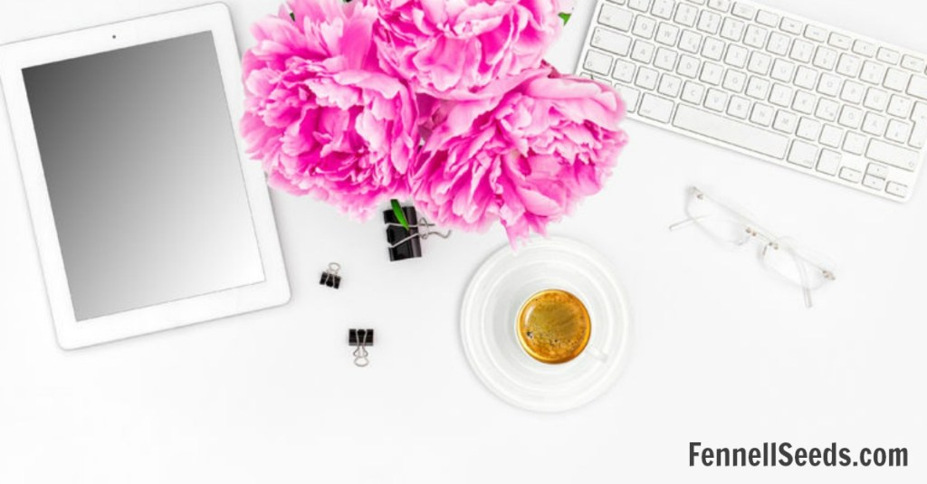 Blog Traffic | Blog Tips | Blogging Tips | Blog Income | How to Blog | Tips for Blogging