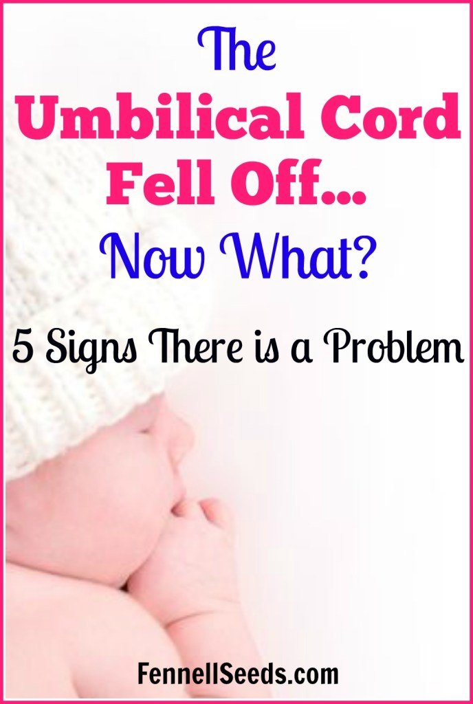 Umbilical cord | umbilical cord fell off | umbilical cord