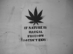priroda i marihuana