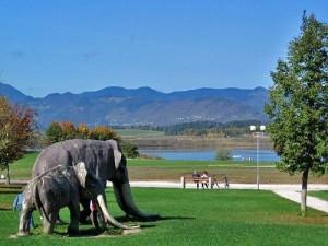 pictures-town-1-2011-mastodon_jezero_371260