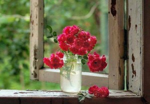 Red-Roses-On-An-Old-Window-Ledge