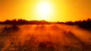 foggy-photographs04