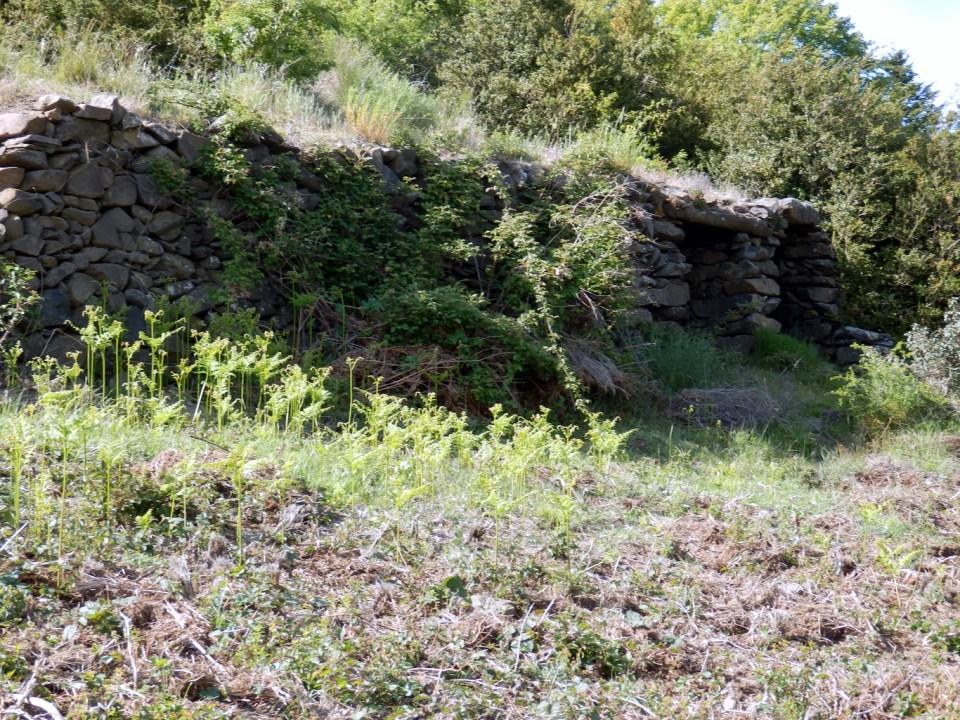 Cabane La Pelado