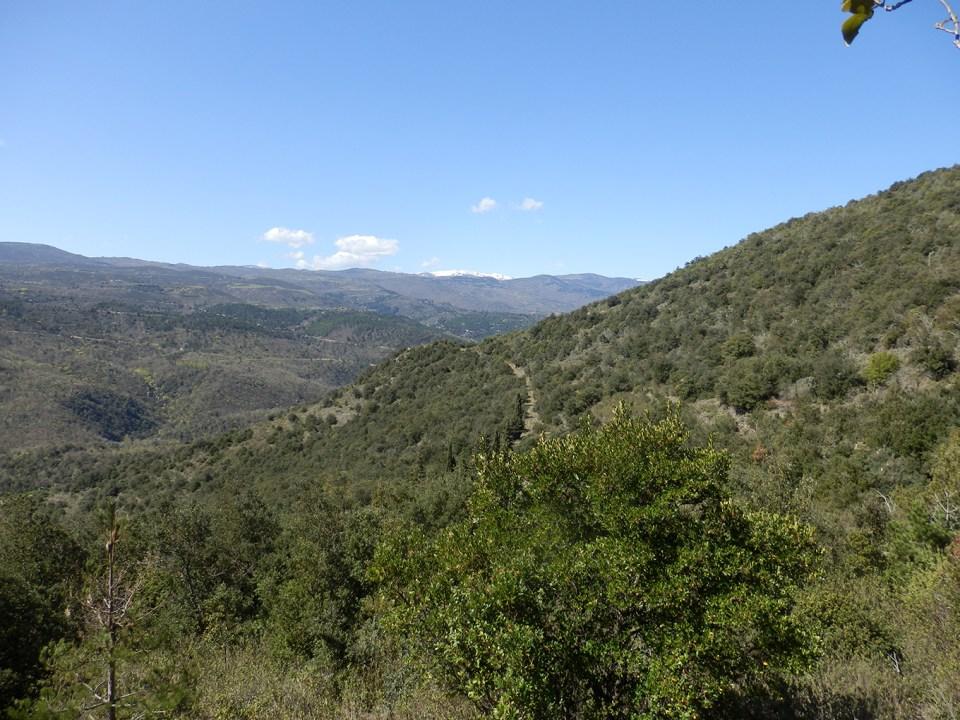 Prats de Sournia : Le Cap Blanc, Natura 2000 chiroptères et flore.