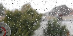 RISISANI Fensterleder und Autoleder