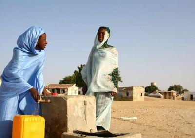 Case Study: Organisation pour la mise en valeur du fleuve Sénégal (OMVS)