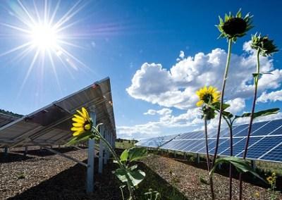 Resilient Energy Platform